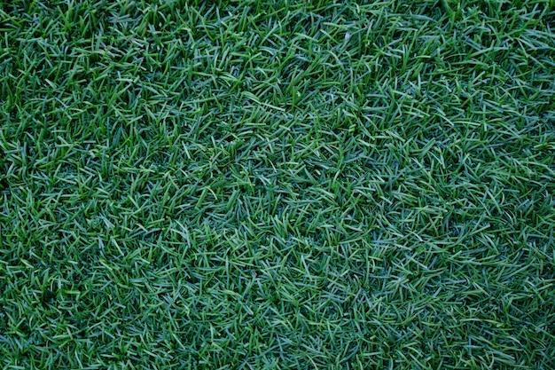 Campo do fundo natural da textura verde fresca da grama do gramado.