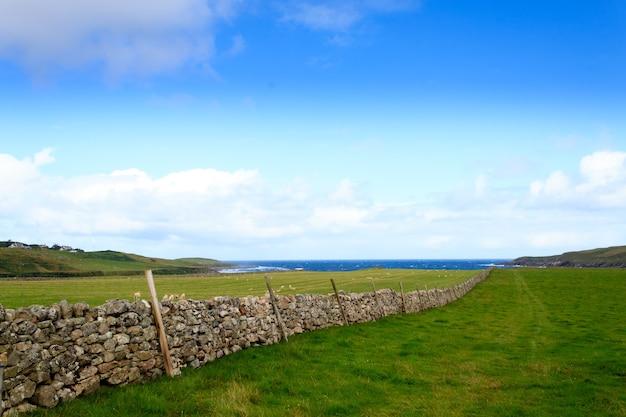 Campo escocês, cerca para gado. parede de pedra em perspectiva. belo panorama rural da escócia