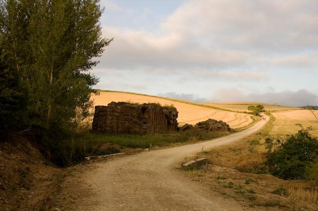 Campo espanhol