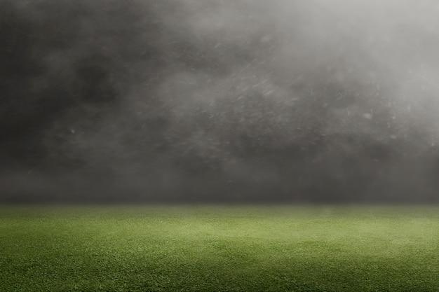 Campo futebol, com, grama verde