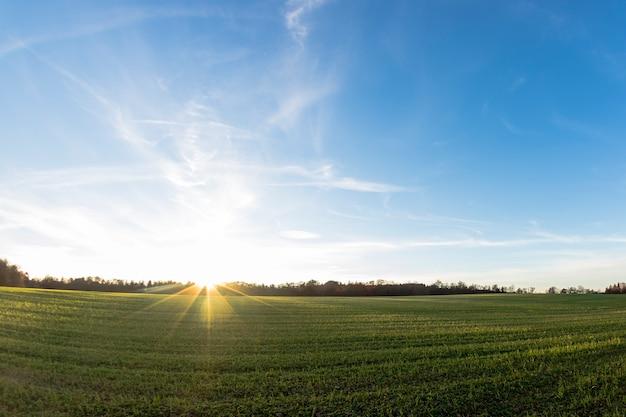 Campo grama, pôr do sol