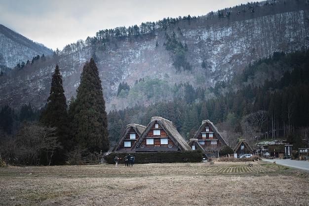 Campo gramado seco com edifícios perto da montanha em shirakawa, japão