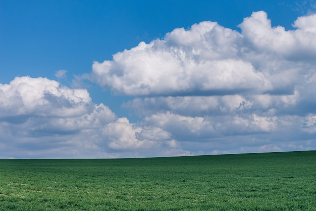 Campo gramado verde bonito sob formações de nuvens fofas