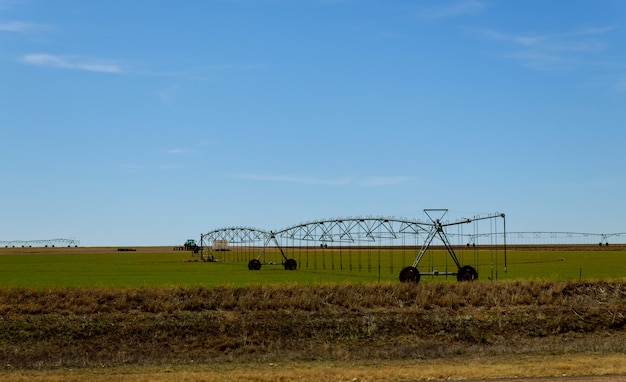 Campo molhando agrícola do sistema de irrigação no dia ensolarado.