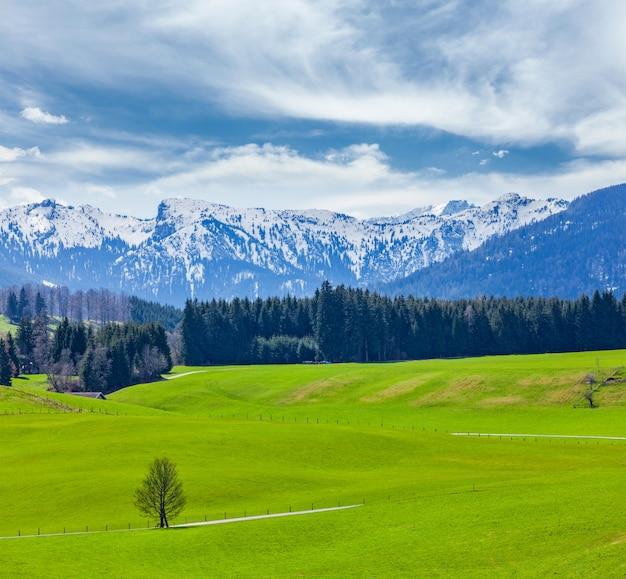 Campo pastoral idílico alemão na primavera com alpes em backg Foto Premium