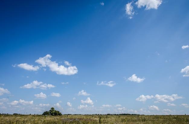 Campo pitoresco contra o céu azul.