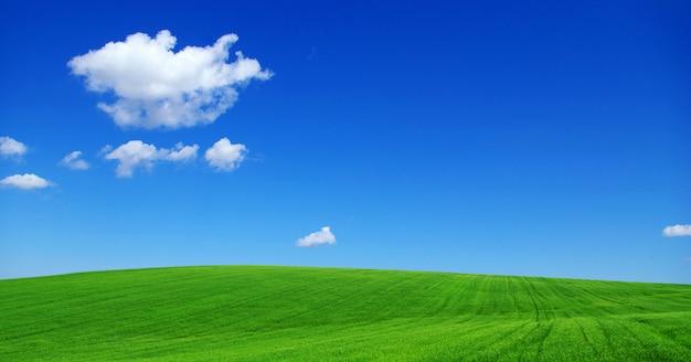 Campo verde com céu azul e nuvens