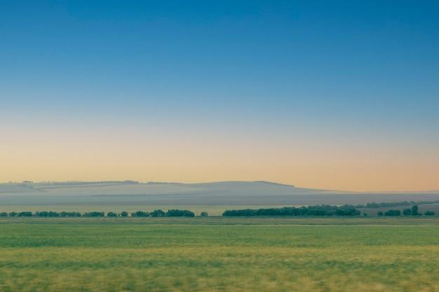 Campo verde com desfoque de linha de floresta em movimento, contra o fundo do pôr do sol