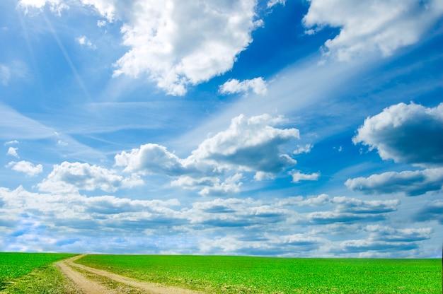 Campo verde com nuvens