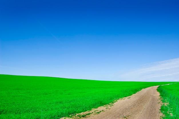Campo verde com uma forma de terra