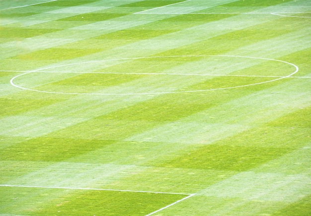 Campo verde de futebol de futebol no estádio Foto Premium