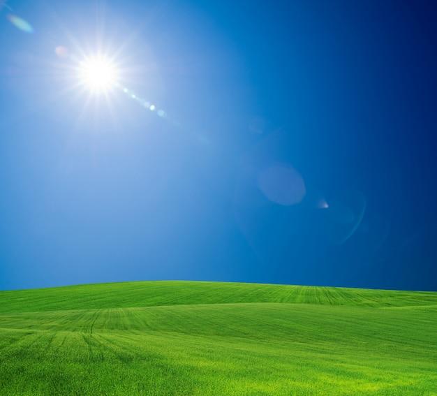 Campo verde e céu ensolarado