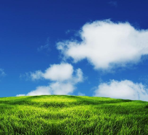 Campo verde e nuvens brancas