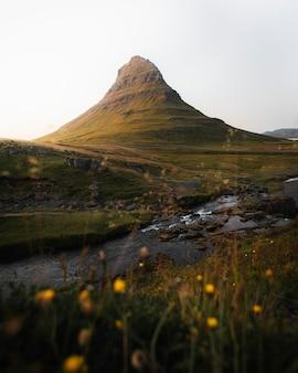Campo verde em church mountain, islândia