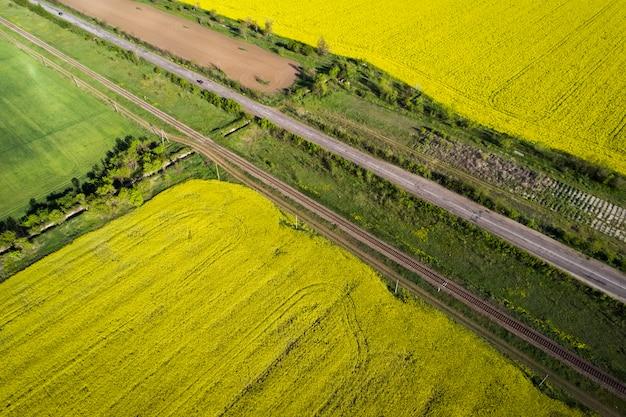 Campos amarelos e verdes