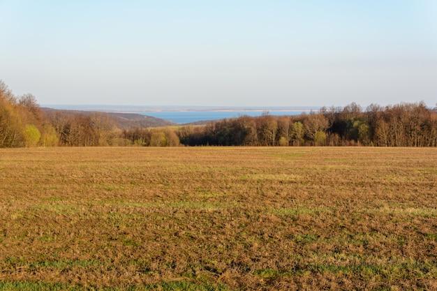 Campos com grama seca amarela e verde fresca. a transição contrastante destaca a grama verde fresca. floresta, campos, prados, árvores e o rio volga ao fundo. paisagem de primavera.