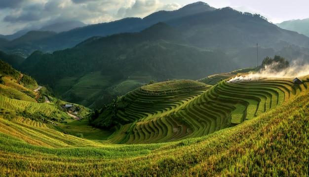 Campos de arroz em terraços de mu cang chai, yenbai, vietnam. paisagens do vietnã.