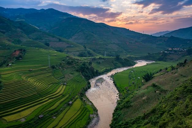 Campos de arroz em terraços em muchangchai, campos de arroz preparam a colheita no noroeste do vietnã.