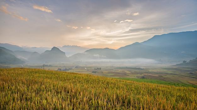Campos de arroz panorama em terraços no pôr do sol no mu cang chai