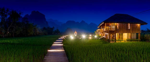 Campos de arroz verde e montanhas, campo de arroz e bela vista vang vieng