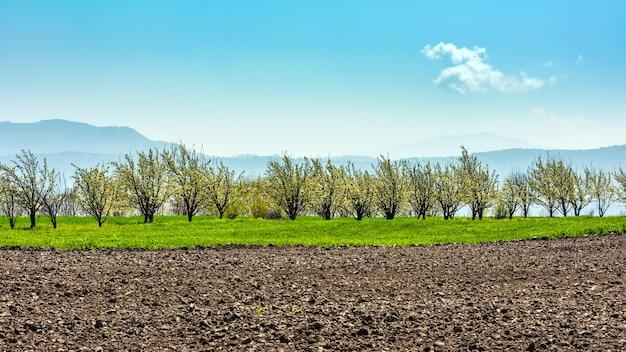 Campos de cultivo arados