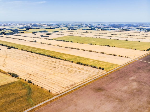 Campos de outono no território de altai. a vista da altura. colheita de trigo no campo. hayfield.
