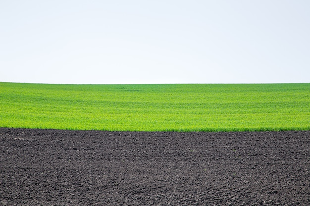 Campos de terra preta linda na ucrânia. paisagem rural agrícola