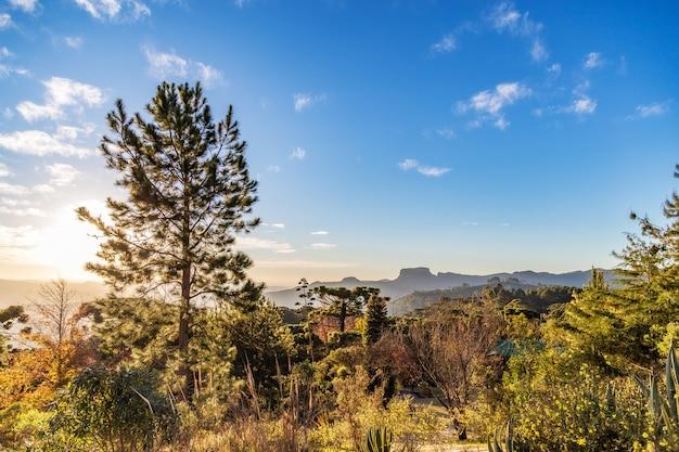 Campos do jordão, brasil. vista da pedra do baú