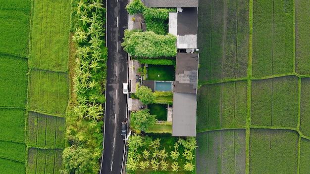 Campos em bali são fotografados a partir de um drone