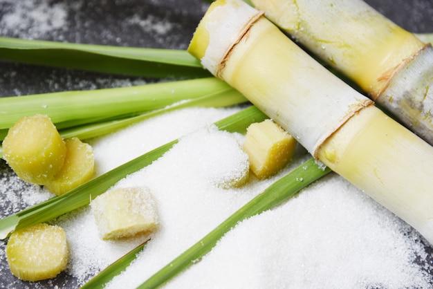 Cana de açúcar e açúcar branco