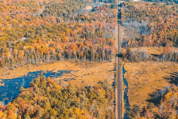 Canadá, ferrovia através da floresta com cores de outono