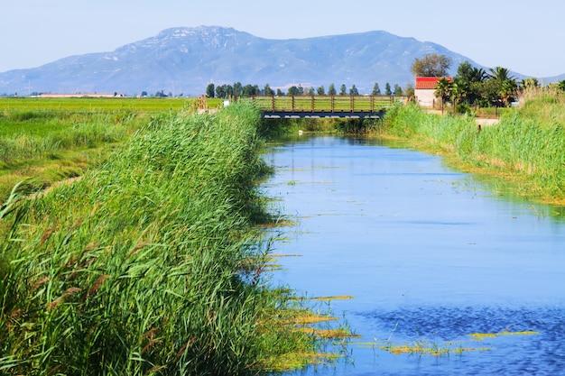 Canal de água através dos campos de arroz