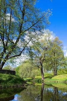 Canal e parque com árvores antigas. céu azul com nuvens brancas. grama verde na costa.