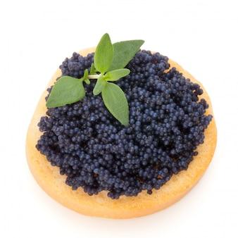 Canapés com o caviar do esturjão preto e a especiaria isolados no branco.