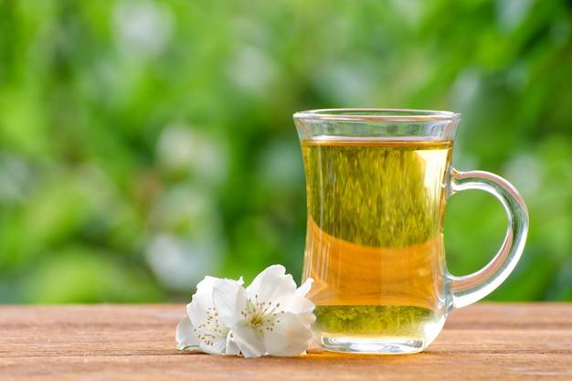 Caneca transparente de chá com jasmim na vegetação, luz solar.