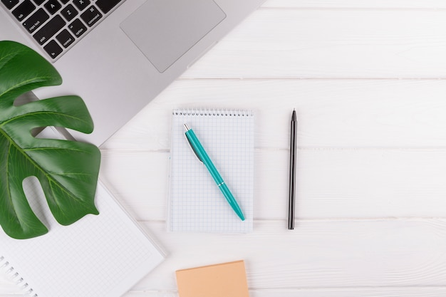 Canetas perto de blocos de notas, planta e laptop