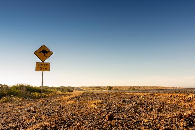 Canguru cruzando sinal de estrada