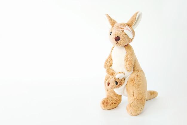 Canguru é brincalhão e tem acidente