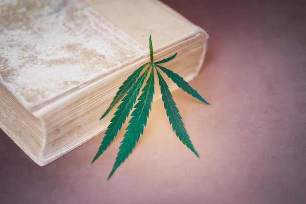 Cânhamo como marcador em livro antigo a expansão da consciência estuda uma enciclopédia de drogas