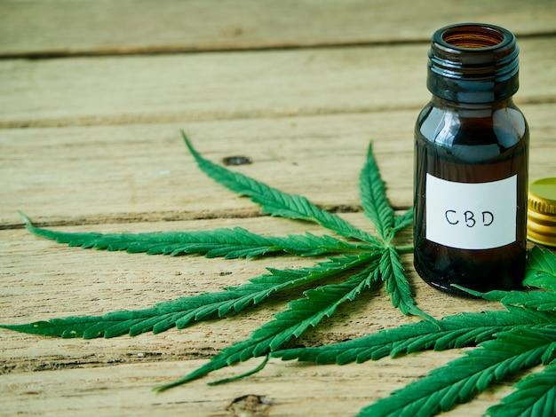 Cannabis com extrato de óleo em uma garrafa