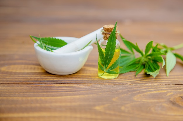 Cannabis erva e folhas para o caldo de tratamento, tintura, extrato, óleo.