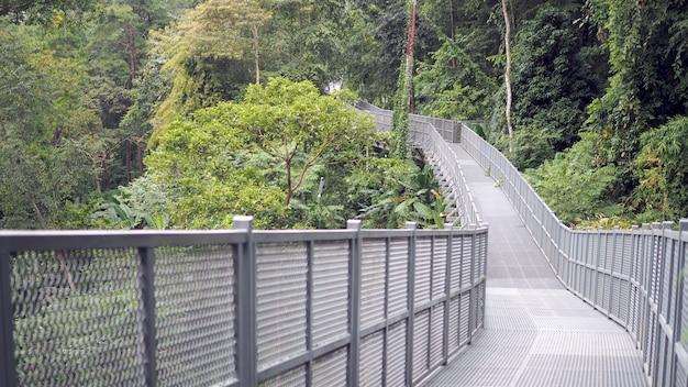 Canopy caminha para explorar a natureza. dossel caminha no jardim botânico rainha sirikit chiang mai, t