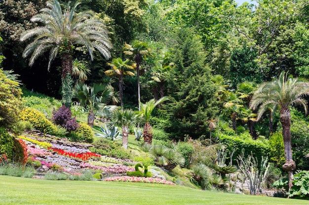 Canteiros de flores e palmeiras coloridos florescendo no parque da cidade de verão