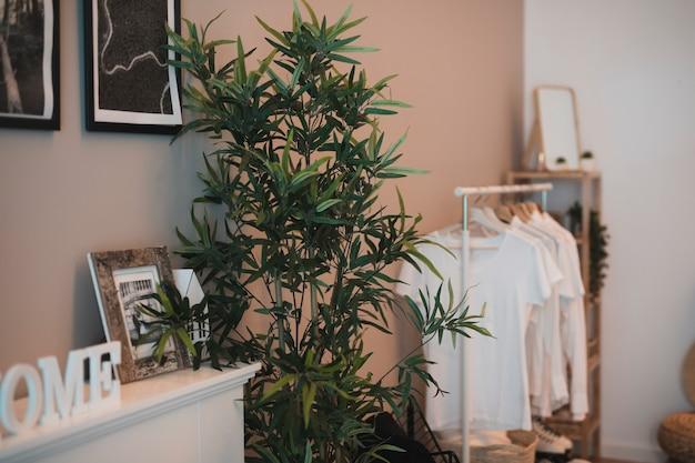 Canto de uma sala com um guarda-roupa simples e uma planta