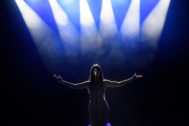 Cantor no palco com luzes. vista do auditório