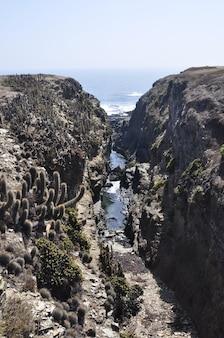 Canyon na praia de punta de lobos em pichilemu, chile em um dia ensolarado