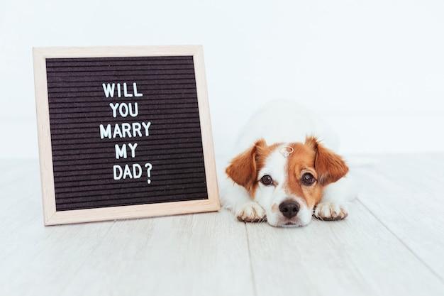 Cão bonito com placa de letra e anel. conceito de casamento