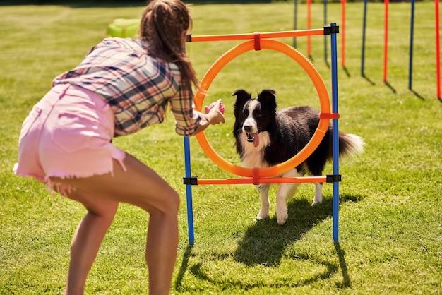 Cão border collie e uma mulher em um campo de agilidade