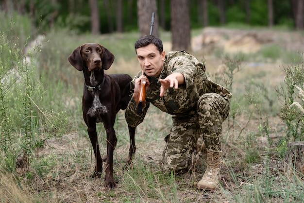 Cão de caça ao coelho vai perseguir animal na floresta.