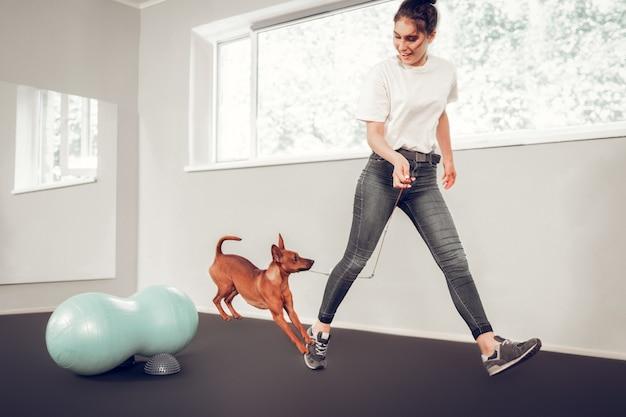 Cão de treino. mulher carinhosa e carinhosa usando jeans treinando seu cachorrinho marrom fofo